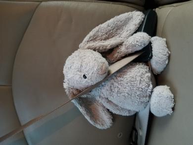 Jellycat grey bunny