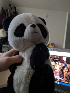 Replacement of Stuffed Panda from Germany