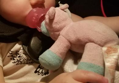 Lost Tiny Wonders Cuddle Buddy Peanutskinny Pig