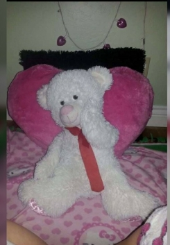 Medium white valentines day bear with pink nose and pink heart patterns on feet with reb neck bow