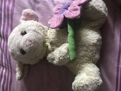 Searching For Beige Lamb With Green Ribbon Holding A Flower With