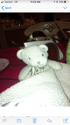 Pink bear security blanket