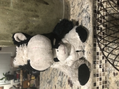 Best Toy Brand Cow with Baby Cow