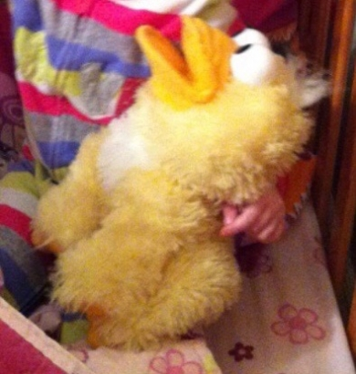 Plush duck puppet that quacks old  MacDonald