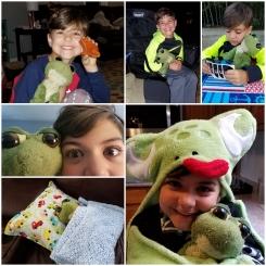 Stuffed green frog