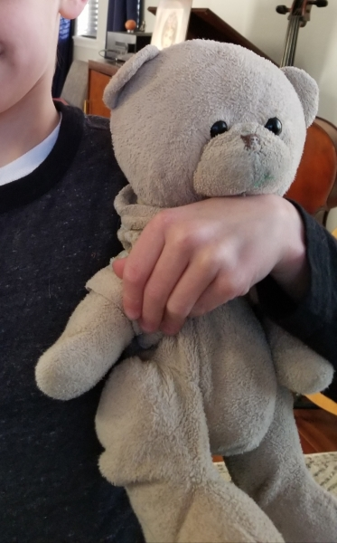 A lost stuffed blonde bear, reward for finding