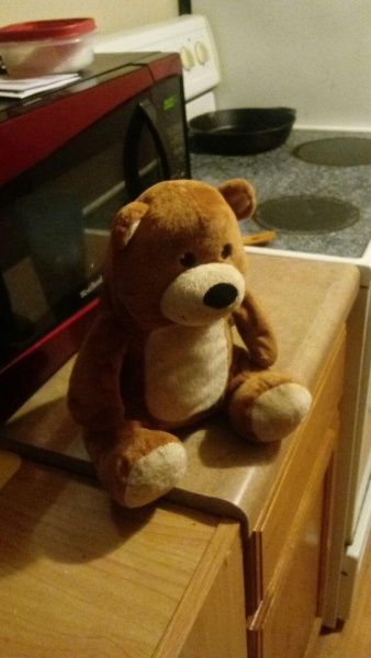 light brown bear with sewn eyes, a smile, and a cut off tag