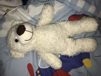 Baby Gund white Bear
