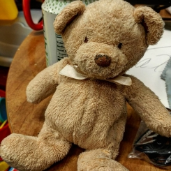 Lost Teddy Bear Small