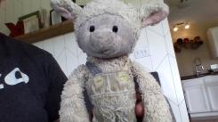 Lamb - Bestever inc Virginia Hein