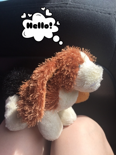 Small webkinz beagle brown and black with long ears