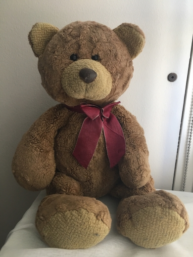 "12"" Teddy Bear with red ribbion"