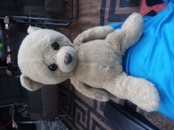Aurora light brown bear with a tag with a bear face on the right arm.