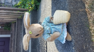 Bunny in dress with straw basket