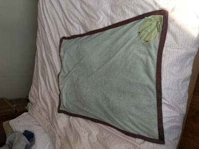 Kidsline soft green blanket with brown satin trim