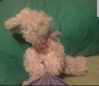"Pink bunny, fuzzy and pink, holding blanket that says ""sweet dreams"""