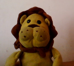 """Yellow Lion with chubby cheeks and a brown mane, """"Sugar Loaf"""" brand"""