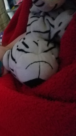 A ragged white tiger toy