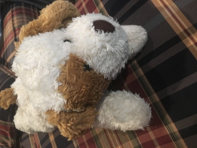 White and brown stuffed puppy