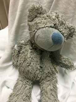 blue teddy bear lost in Milwaukee airport Southwest Airlines