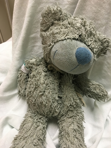 blue teddy bear lost in Milwaukee airport