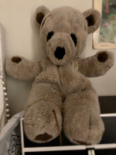 Light brown Teddy bear with dark brown markings from 80s