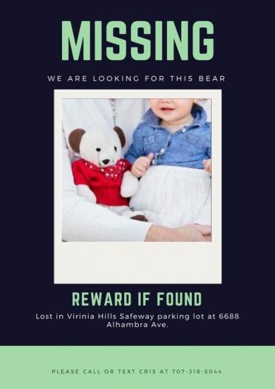 Bear cub lost