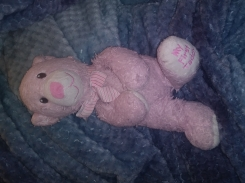 """For sure loved, pink """"MY FIRST TEDDY"""" bear with a bow ribbon on her neck. Is being well taken care o"""