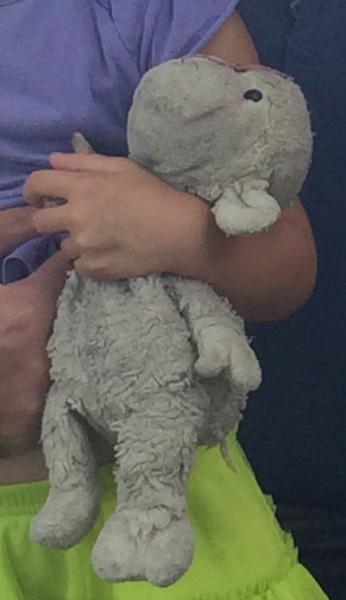 Lost Pink Blanket19 Plush White Floppy Lambwhite Lamb