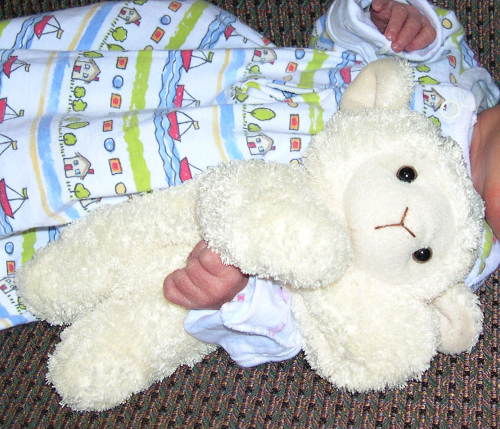 &#8220;Lamby&#8221; - Picture from 7 years ago shows cream-colored plush bean-bag type lamb.  The previously silky soft fur has been loved to a matted cuddly texture.  The tag is still on the (left) hind leg but is now faded.